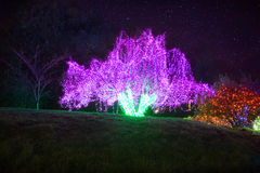 Zoolights at the Point Defiance Zoo in Tacoma, WA. Shington royalty free stock photo