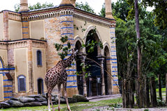 Zoological Gardens in Germany Stock Photography