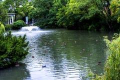 Zoologiczni ogródy w Niemcy Zdjęcia Stock