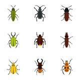 Zoology icons set, flat style Royalty Free Stock Photo