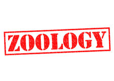 ZOOLOGY Stock Image