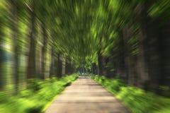 Zoom della strada Fotografia Stock
