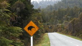 Zoom in shot on a kiwi road sign stock video