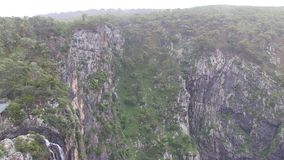 Zoom in shows tree growing on cliff. stock footage