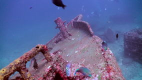 Zoom in to wreck on the sea sandy bottom. Amazing, beautiful underwater world Bali Indonesia and  life of its inhabitants, creatures and diving, travels with stock video footage
