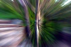 Zooma in i en skog med den hög hastigheten texturerad bakgrund Royaltyfri Foto