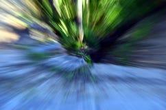 Zooma in i en skog med den hög hastigheten texturerad bakgrund Arkivbild