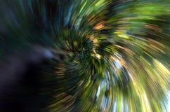 Zooma in i en skog med den hög hastigheten texturerad bakgrund Royaltyfri Bild