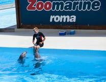 Zoomarine, parque da água situado em Torvaianica, Roma Fotografia de Stock