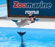 Zoomarine, parque da água situado em Torvaianica, Roma Fotografia de Stock Royalty Free