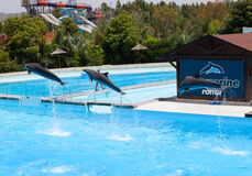 Zoomarine, Wasserpark gelegen in Torvaianica, Rom Lizenzfreies Stockfoto