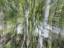 Zoombristning av träd Royaltyfri Bild