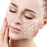 Zoomcirkelshower torkar ansikts- hud, innan de fuktar Arkivbild