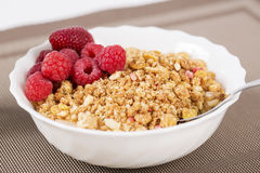 Zoomed golden cereals with berries with spoon Stock Image