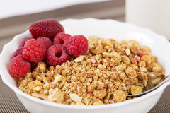 Zoomed shapy cereals with berries with spoon Royalty Free Stock Images