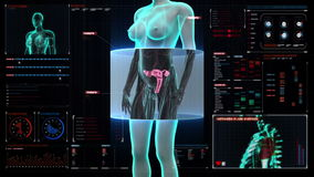 Zooming female body scanning womb in digital display dashboard. Zooming female body scanning womb, X-ray image stock video footage