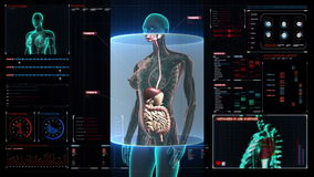 Zooming female Human body scanning internal organs, Digestion system.Blue X-ray light on digital display user interface. Zooming female Human body scanning stock footage