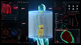 Zooming Human the internal organs, Digestion system.Blue X-ray light. on digital display user interface panel.