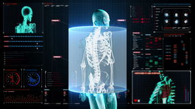 Zooming Human skeletal structure, bone system, Blue X-ray light.in digital dashboard, display panel.