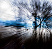 Zooming through the trees #2. A picture of some trees taken with a slow shutter speed while changing the focal length of the lens.  Color effects added Royalty Free Stock Images