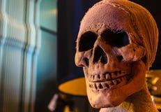 Zoomu widok czaszka Halloween Zdjęcie Stock