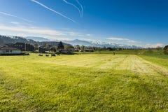 Zootecnia in Svizzera Immagine Stock Libera da Diritti