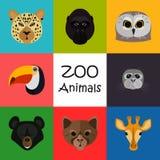 Zootiere färben Ebene eingestellt auf Farbhintergrund Stockbild