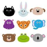 Zootierhauptgesicht Netter Karikaturzeichensatz Babykinderbildung Katze, Kaninchen, Hase, Jaguar, Hund, Nilpferd, Elefant, Lizenzfreies Stockbild