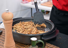 Zophobas morio worms food frying on the pan Stock Images
