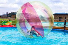 Zorbing. Entertainment on water Stock Photography