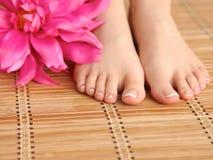 Zorg voor mooie vrouwenbenen met bloem Royalty-vrije Stock Foto's