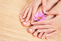 Zorg voor mooie vrouwenhuid en spijkers Pedicure en Manicure royalty-vrije stock foto's
