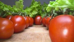 Zorra disparada de tomates animadores vermelhos com as folhas da alface sobre o fundo de madeira da tabela Deslizamento através d vídeos de arquivo