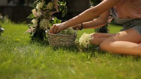 A zorra fresca esmeralda do slider da grama disparou de uma menina que faz um arco floral sobre a grama verde para a decoração fl filme