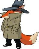 Zorro del espía Fotografía de archivo libre de regalías
