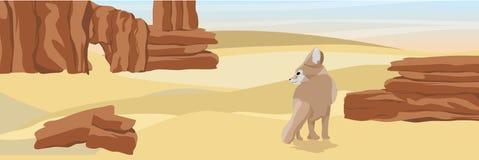 Zorro del fennec del desierto en el desierto con las rocas de piedra y la arena amarilla ilustración del vector