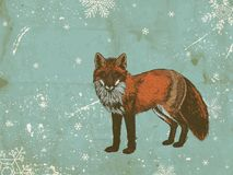 Zorro del invierno stock de ilustración