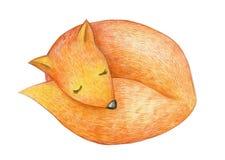 Zorro lindo el dormir stock de ilustración