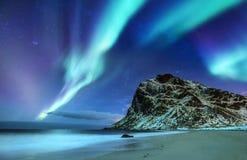 Zorz borealis na Lofoten wyspach, Norwegia Zieleni północni światła nad góry i oceanu brzeg Nocy zimy krajobraz z obraz stock