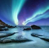 Zorz borealis na Lofoten wyspach, Norwegia Zieleni północni światła nad oceanu brzeg Nocne niebo z biegunowymi światłami Nocy zim obrazy royalty free