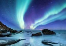 Zorz borealis na Lofoten wyspach, Norwegia Zieleni północni światła nad oceanu brzeg Nocne niebo z biegunowymi światłami Nocy zim zdjęcia stock
