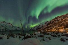 Zorz borealis nad Tromso z traw płochami Zdjęcia Royalty Free