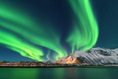 Zorza Borealis Lofoten Wyspy, Norwegia zorza zielone światła północni obraz royalty free