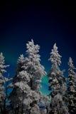 Zorza Borealis w Lapland Obraz Stock