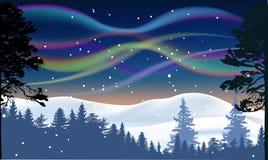 Zorzy polaris nad zima las ilustracji