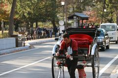 Japanese man dragging rickshaw, it is for sightseeing services. royalty free stock photos