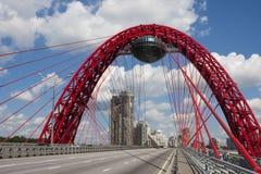zostający bridżowy kabel Zdjęcie Royalty Free