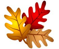 zostaw clipart dębowego jesienią drzewa Obrazy Royalty Free