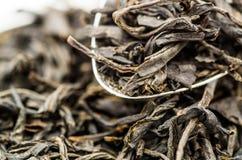 zostaw czarną herbatę Zdjęcie Stock