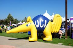 ZOT de Miereneter is de Universiteit van Califonia Irvine Mascot Stock Foto